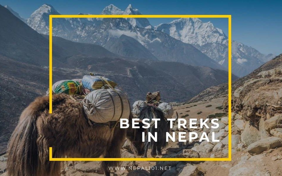 Best Treks in Nepal 2021 – Find out which one is for you?